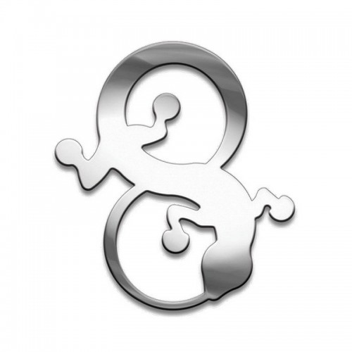 Амулет серия символы Суперхит №25 Саламандра медицинская сталь